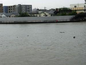 0910nakagawa05