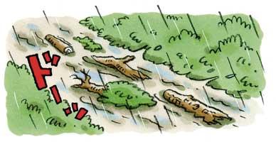 川の水がにごり、水といっしょに倒れた木が流れてくる③