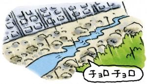 雨は降り続いているのに川の水が減る③