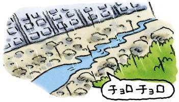雨は降り続いているのに<br>川の水が減る③