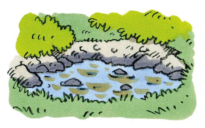 池の水がにごったり<br>急に増えたり減ったりする