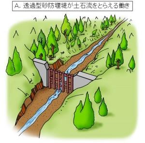 ②透過型砂防堰堤を設けた場合でも、普段は、水と土砂は同じように下流に流れていきます。