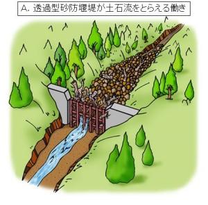 ③大雨が降り土石流が発生したとき、大きな岩、流木などを含む土砂は、堰堤に引っかかり止まります。